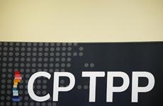 Những điểm cần cân nhắc khi CPTPP tiếp nhận thêm thành viên mới