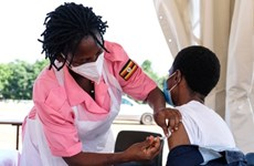 Nam Phi thúc WTO miễn trừ quyền sở hữu trí tuệ với vaccine COVID-19