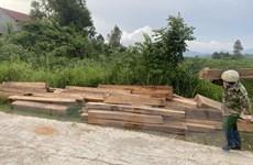Phát hiện 5,45m3 gỗ trái phép tại nhà nhân viên BQL rừng Sơn Hòa