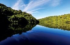 """Khu dự trữ sinh quyển thế giới Đồng Nai: """"Lá phổi"""" xanh ở Đông Nam Bộ"""