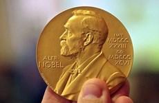 Nobel 2021: Hồi hộp chờ các chủ nhân giải thưởng lộ diện