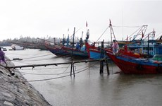 Quảng Ngãi hướng dẫn cho hai tàu ở vùng nguy hiểm vào nơi an toàn