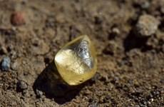 Du khách tìm thấy viên kim cương trị giá gần 700 triệu khi đi chơi