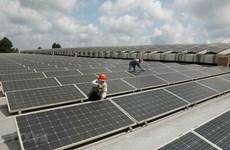 Ngành năng lượng tái tạo Việt Nam tiếp tục hấp dẫn vốn ngoại