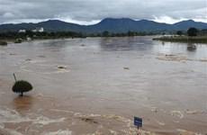 Quảng Ngãi: Nỗ lực tìm kiếm 2 vợ chồng bị nước lũ cuốn trôi