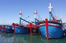 Quý 4 sẽ hoàn thiện thể chế quản lý nghề cá theo khuyến nghị của EC