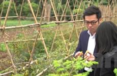 Bài 3: Phương thức canh tác truyền thống sẽ tạo ra rau sạch?