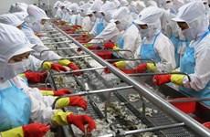 Thủy sản Minh Phú đưa 70 triệu cổ phiếu lên giao dịch trên UpCoM