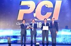 PCI 2018: Có hiện tượng 'đụng trần thể chế' trong cải cách?