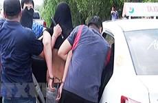 Hải quan phối hợp bắt giữ hàng loạt vụ buôn lậu ma túy số lượng lớn