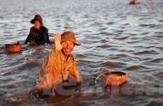 Khát vọng thoát nghèo từ trong sản xuất bền vững