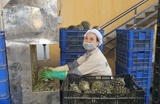 [Photo]: Doanh nghiệp khẩn trương sản xuất trong bối cảnh đại dịch