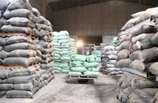 Hải quan thông báo về hạn ngạch xuất khẩu gạo được hồi lại tháng Tư