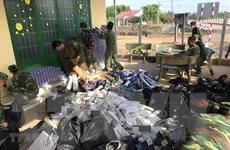 Hải quan bắt giữ 1.148 vụ vi phạm thương mại hàng hóa