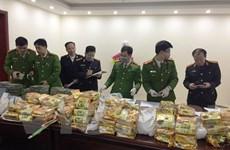 Bắt giữ nhóm đối tượng chuyên chở hàng trăm kg ma túy tại Nghệ An