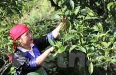 Bài 4: Tư duy khoa học giúp người dân làm giàu bằng nghề nông