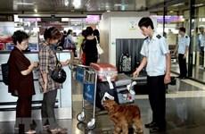 Hải quan bắt giữ hơn 3.000 vụ việc vi phạm thương mại trong tháng Ba