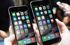 """VinaPhone, Viettel """"chốt"""" thời điểm bán iPhone 6 chính hãng"""