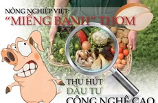 """Nông nghiệp Việt: """"Miếng bánh"""" thơm thu hút đầu tư công nghệ cao"""