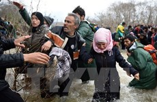 Viết về vấn đề tị nạn đoạt giải Nhất thi Viết thư quốc tế ở Việt Nam