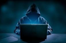 Gần 600 website của Việt Nam bị tấn công trong tháng 11
