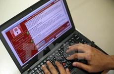 Thiệt hại do virus máy tính gây ra năm 2017 ở Việt Nam đạt mức kỷ lục