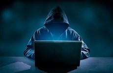Lo hacker 'quấy nhiễu' dịp Tết, nhà chức trách lên tiếng cảnh báo