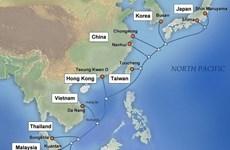 APG gặp sự cố, Internet từ Việt Nam đi quốc tế bị ảnh hưởng