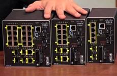 Hơn 1.000 thiết bị của Cisco ở Việt Nam gặp lỗi bảo mật nghiêm trọng