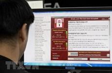 Miễn phí diễn tập chống mã độc đào tiền ảo qua lỗ hổng phần mềm