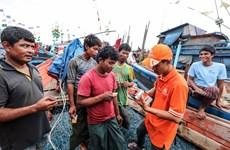 'Kỷ lục' mới về tốc độ tăng trưởng thuê bao của mạng Viettel