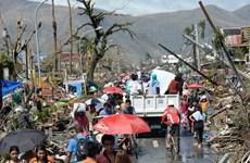 Người sống sót Philippines tuyệt vọng tìm sự cứu trợ