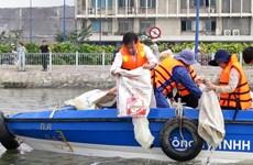 TP.HCM: Thả gần hai tấn cá trên kênh Tàu Hũ-Bến Nghé