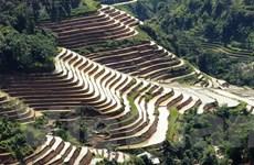 Vẻ đẹp lung linh của ruộng bậc thang Hoàng Su Phì mùa đổ nước