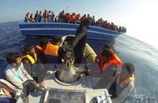 Hải quân Italy cứu hơn 1.600 người di cư gặp nạn trên biển