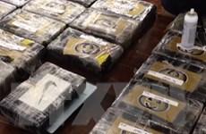 Cảnh sát Tây Ban Nha triệt phá 4 nhóm vận chuyển ma túy