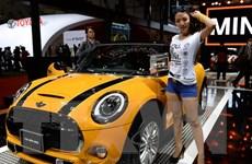 Gần 80% người sở hữu xe Mini tại Trung Quốc là phụ nữ