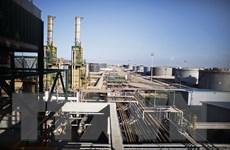 Ngành hóa dầu của Pháp thua lỗ lớn suốt từ năm 2009 đến nay