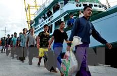 Indonesia và Thái Lan phối hợp chặt chẽ chống đánh cá trái phép