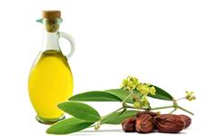 Những tác dụng kỳ diệu của dầu jojoba trong việc làm đẹp