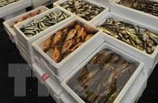 Hàn Quốc thảo luận với Nhật về lệnh cấm nhập hải sản Fukushima