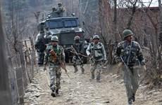 Ấn Độ tiêu diệt ít nhất 15 phiến quân trong lãnh thổ Myanmar