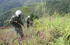 Triển khai dự án rà phá bom mìn sót lại sau chiến tranh ở Hà Tĩnh