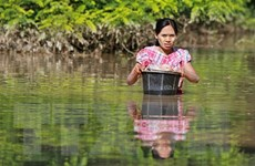 ASEAN triển khai đội ngũ chuyên gia đến cứu trợ lũ lụt ở Myanmar