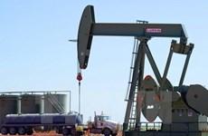 Thị trường dầu mỏ trồi sụt thất thường trong tuần qua