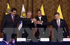 Colombia - Venezuela nhất trí bình thường hóa quan hệ