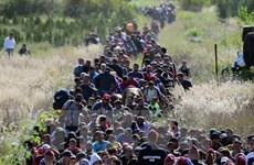 """Thổ Nhĩ Kỳ không phải """"trại tập trung"""" cho người tị nạn"""