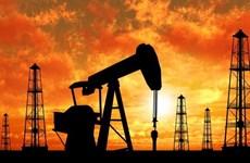 Giá dầu thế giới tăng trở lại do hoạt động săn hàng giá rẻ