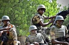 Quân đội Nigeria giải cứu 338 người bị Boko Haram bắt giữ