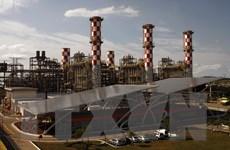Hạ viện Hà Lan thông qua kế hoạch đóng cửa các nhà máy nhiệt điện